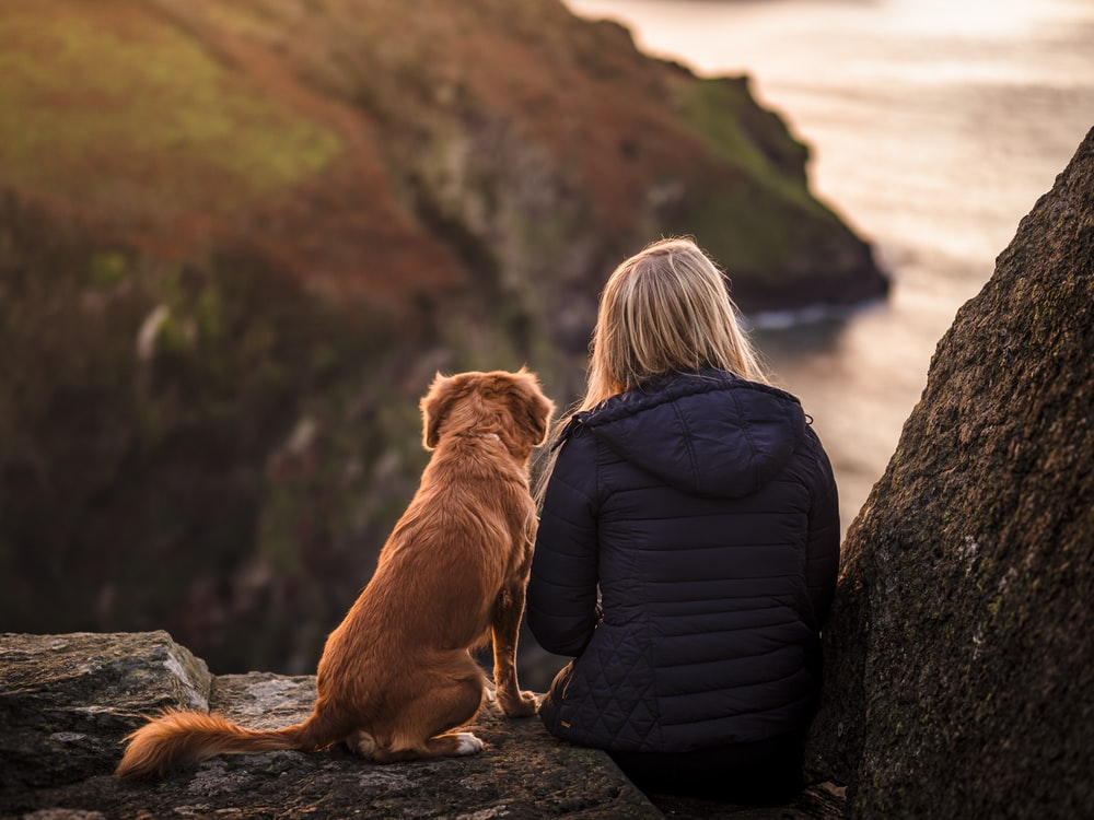 woman in black jacket sitting beside brown dog on rock near body of water during daytime