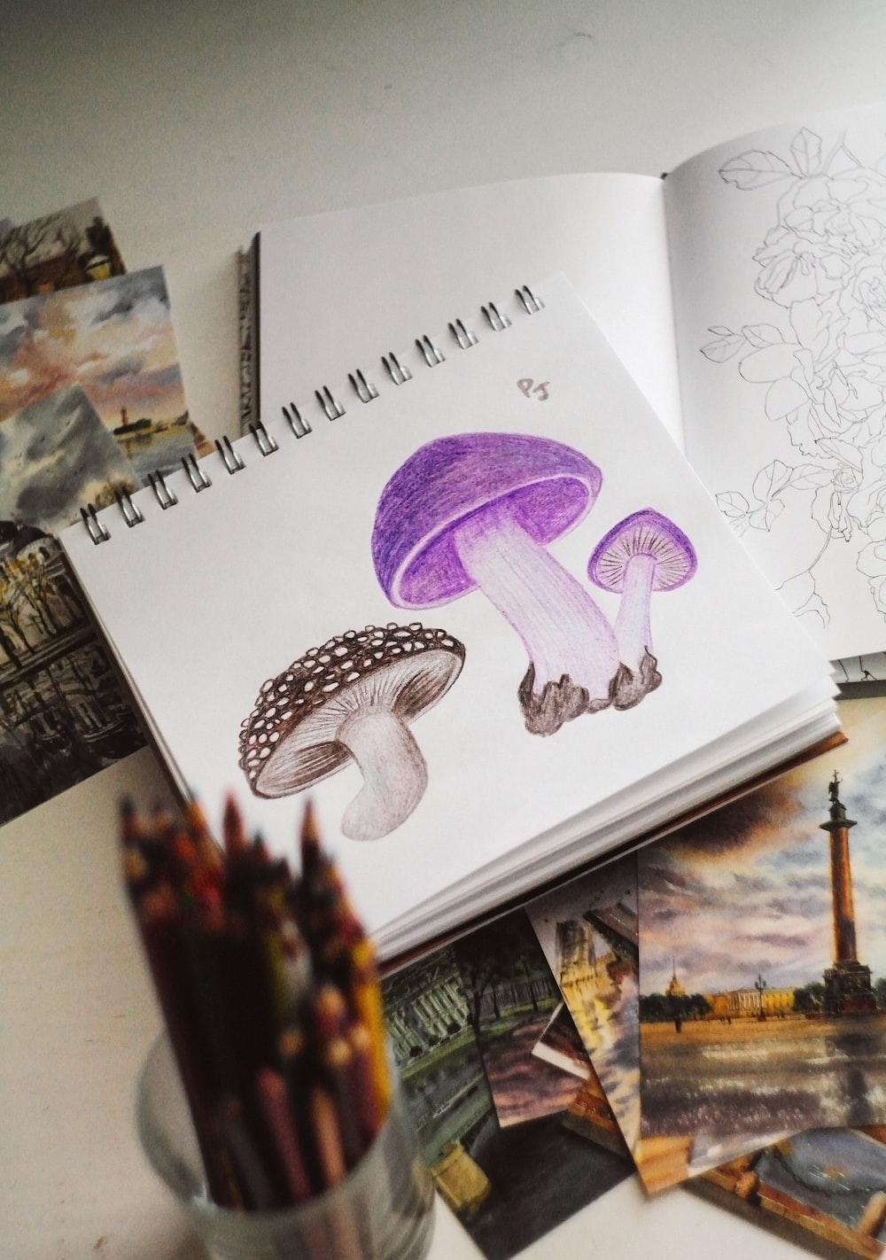 purple and white bird illustration