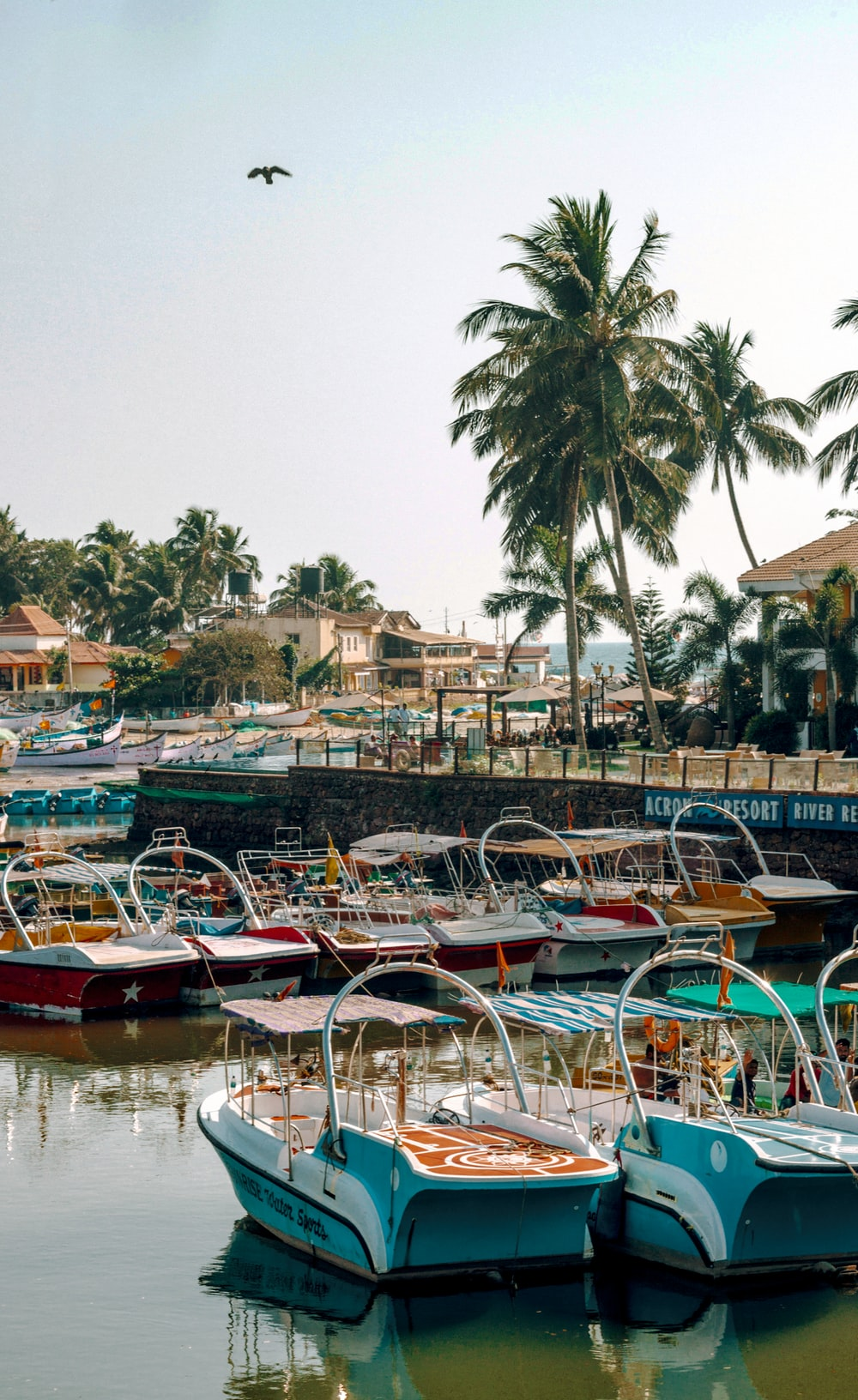 boats on dock near buildings during daytime