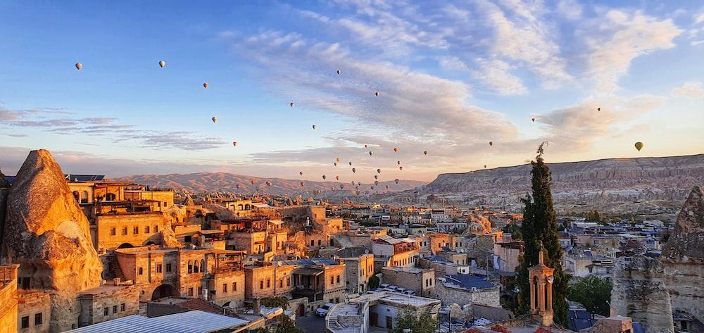 birds flying over city during daytime