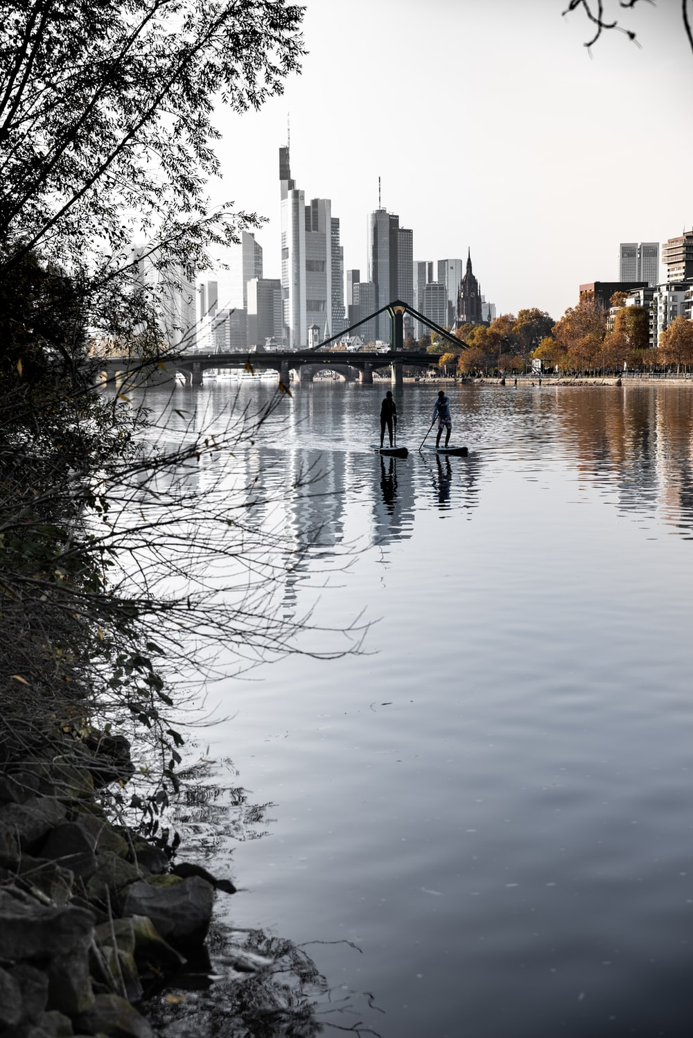 body of water near trees and buildings during daytime