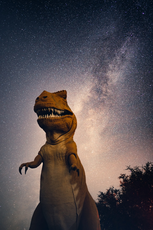 brown statue under starry night