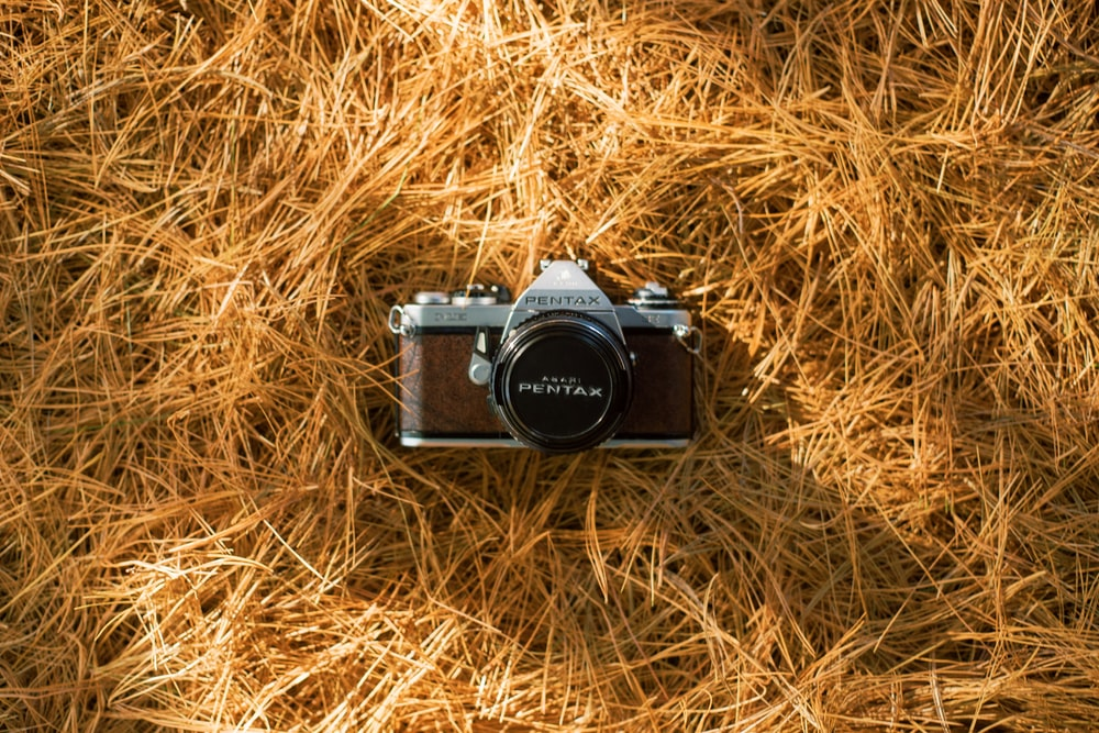 black and silver dslr camera on brown grass