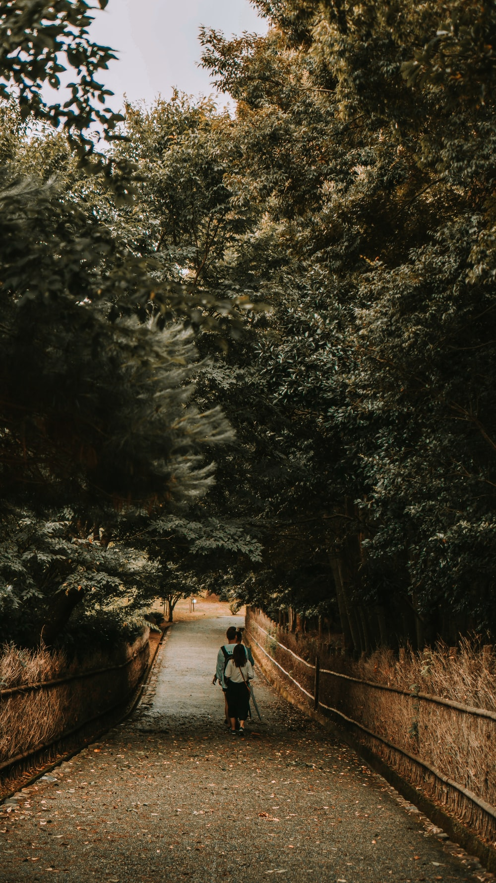 person in black jacket walking on pathway between trees during daytime