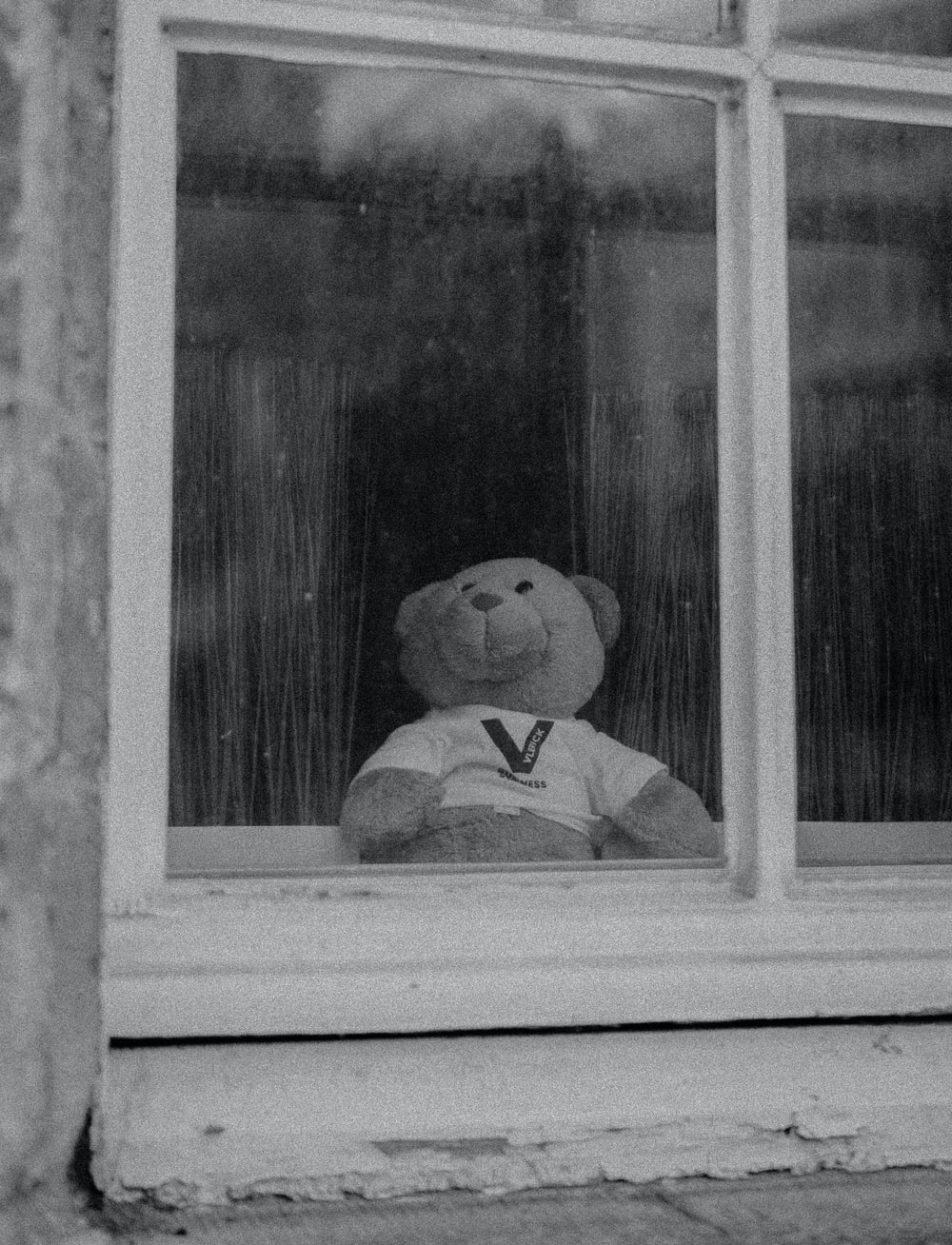 grayscale photo of bear plush toy in window