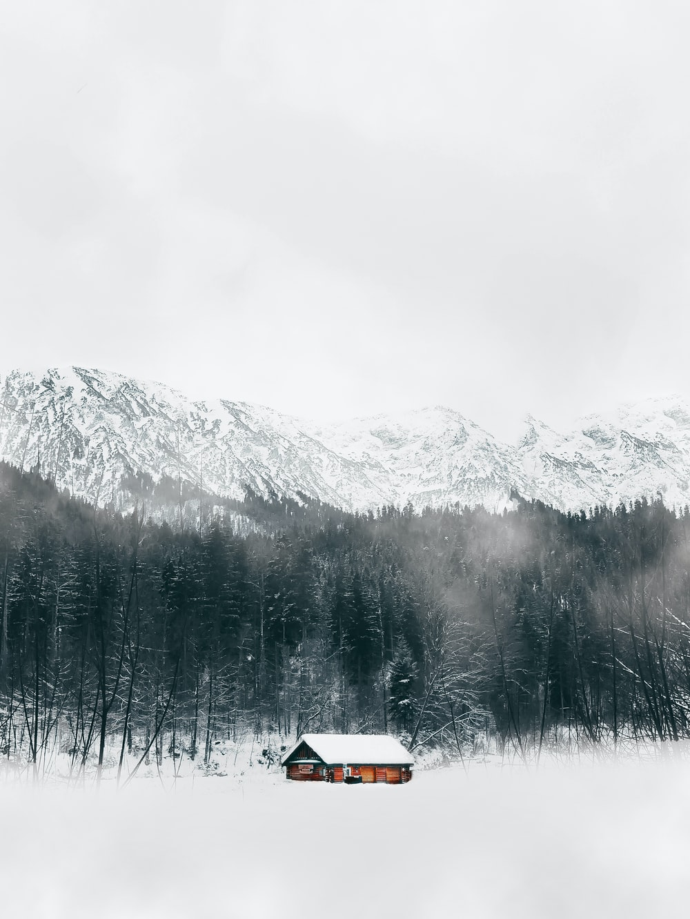 brown house near trees and snow covered mountain during daytime