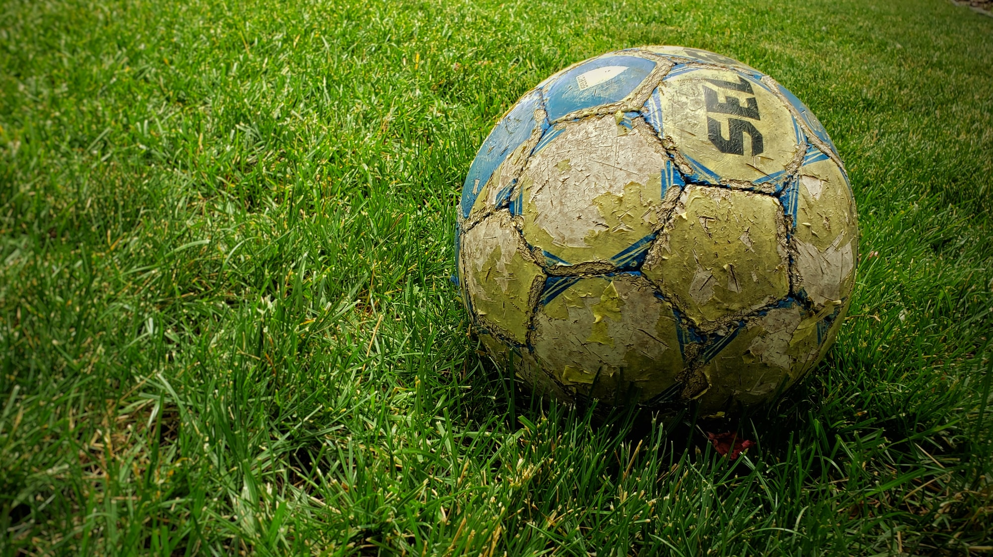 Thoughts on the Effects of Social Ownership of Football Clubs