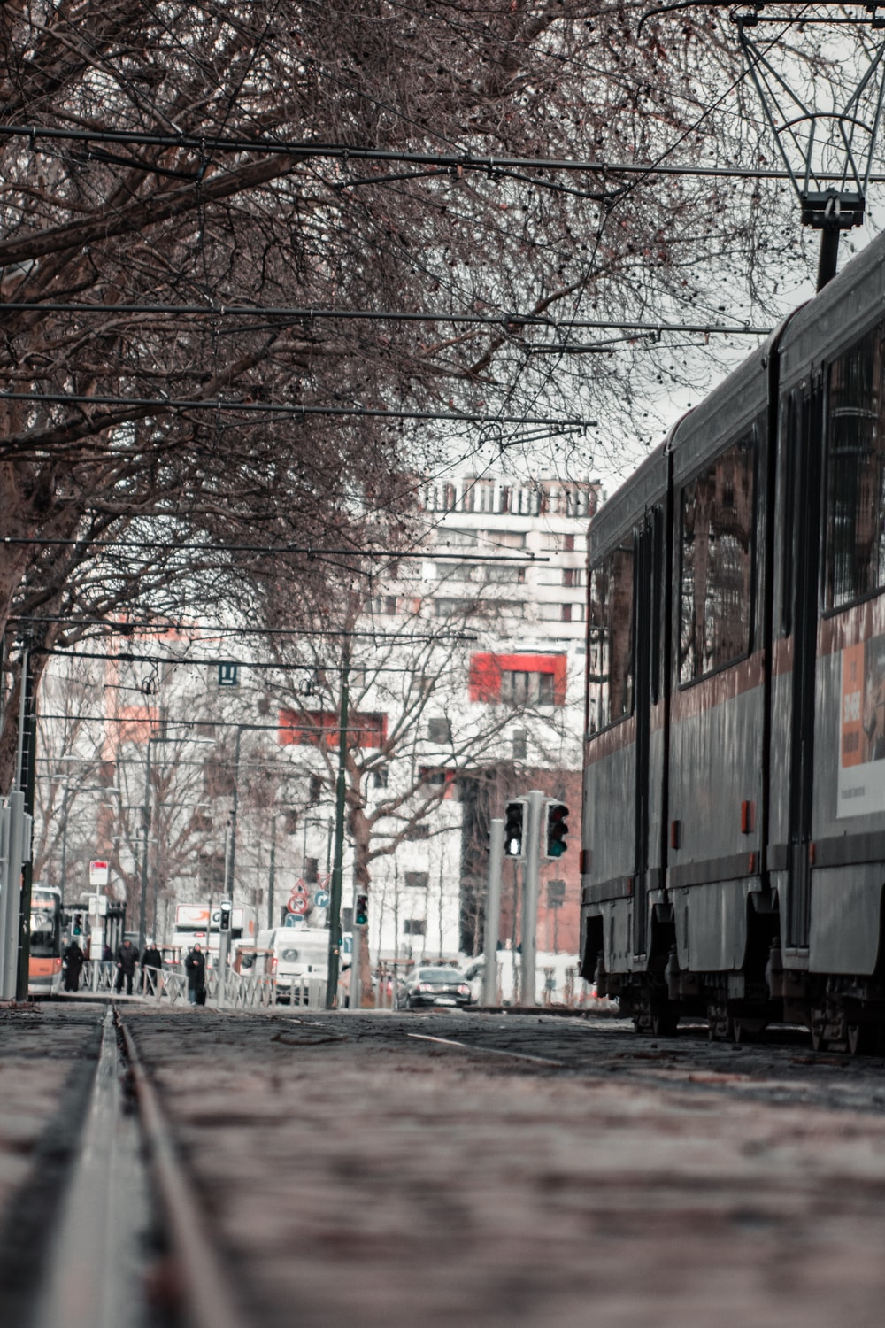 white and red train near bare trees during daytime