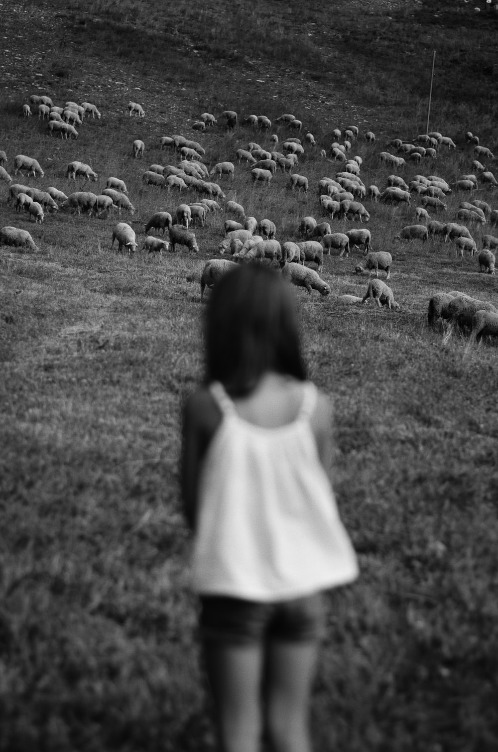 girl in white dress standing on grass field