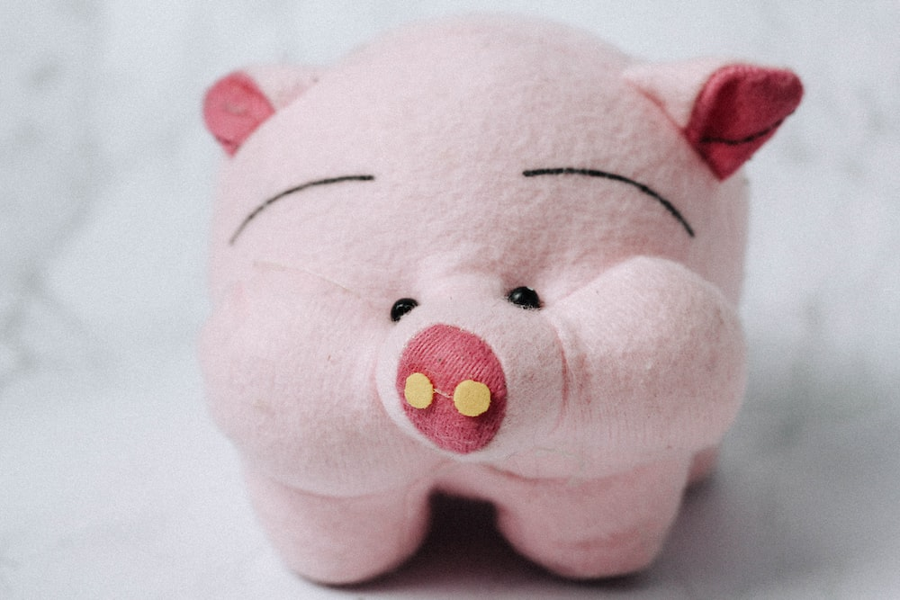 white and pink pig plush toy