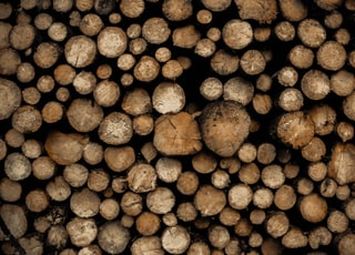 pile of brown wooden logs