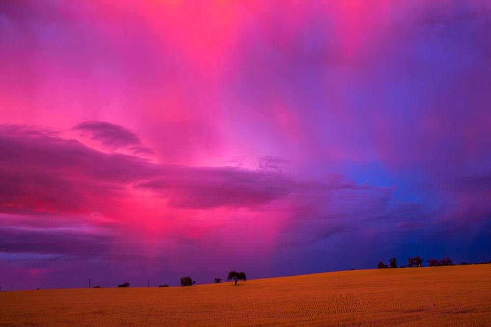 people walking on sand under purple sky