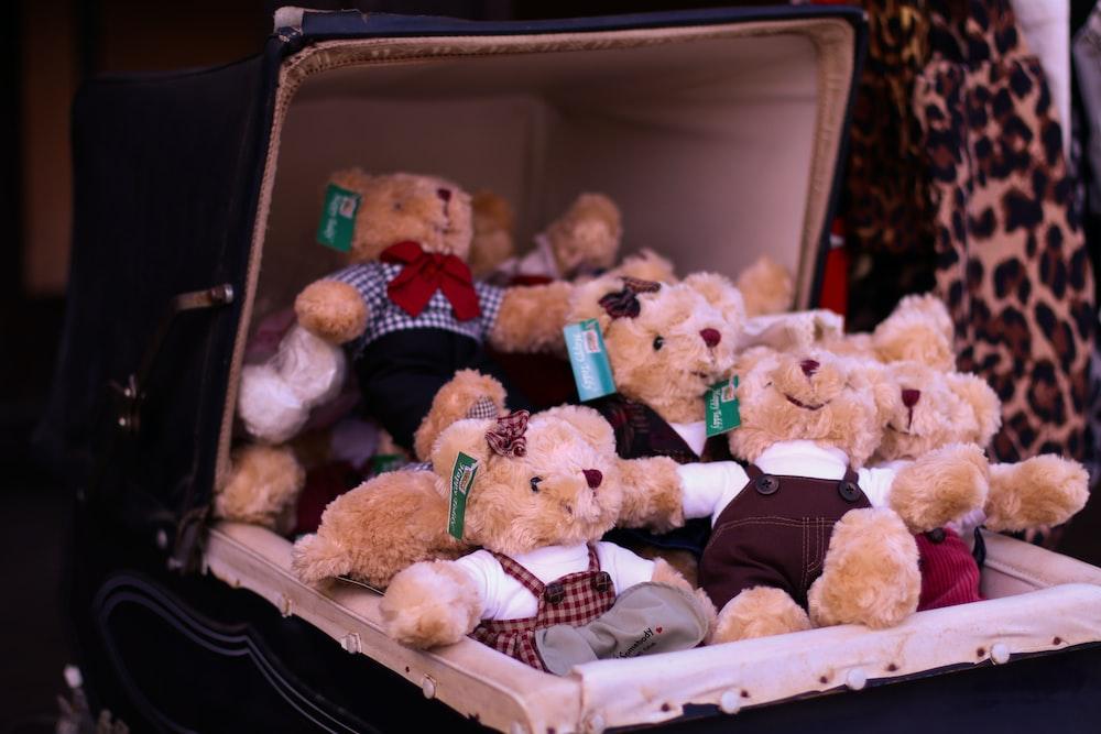 brown bear plush toy in box