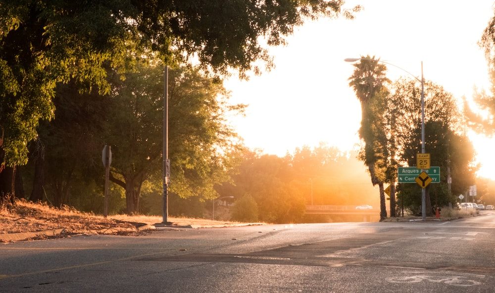 gray concrete road with trees on side during sunset