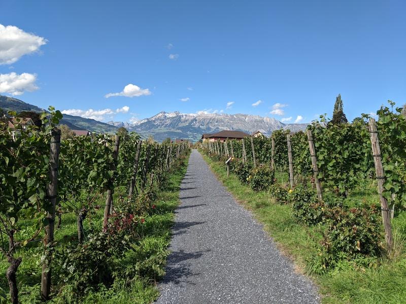 Coldest places in Liechtenstein by minimum mean temperature