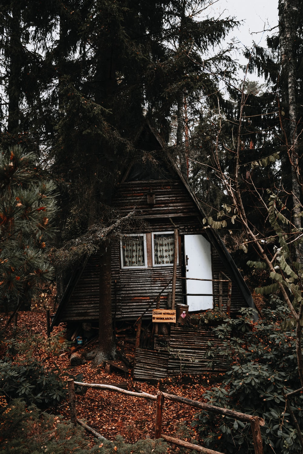 white and brown wooden house surrounded by trees