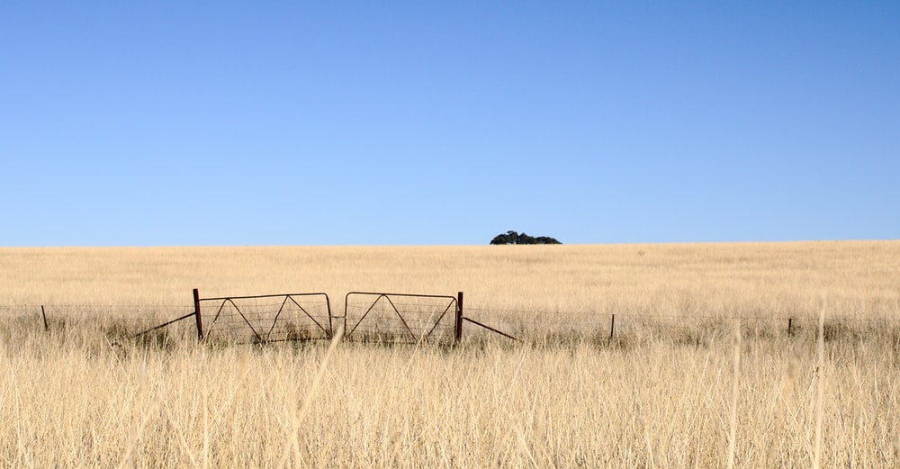 brown wooden fence on brown grass field during daytime