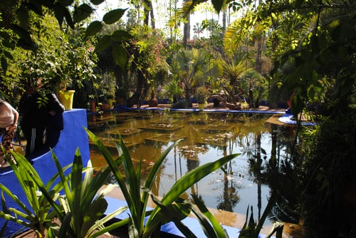 garden water fountains sydney