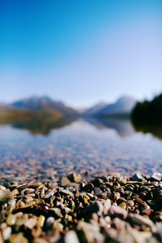 gray rocks near body of water during daytime
