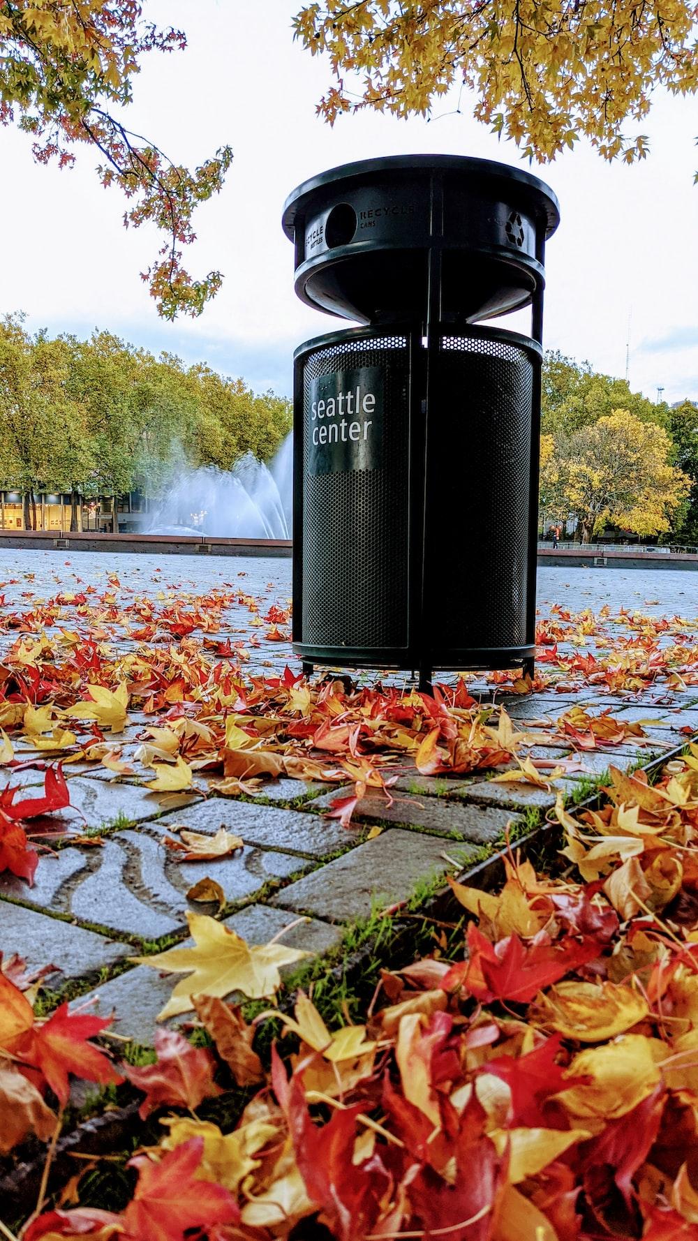 black steel trash bin on brown leaves near body of water during daytime