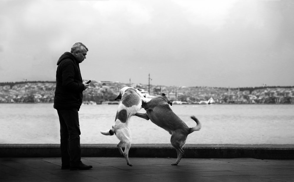 man in black jacket standing beside dog in grayscale photography