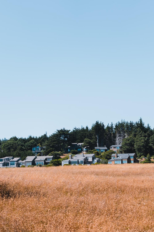 houses near green trees under white sky during daytime