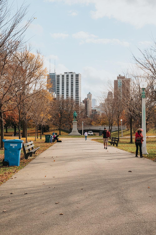 people walking on sidewalk near bare trees during daytime