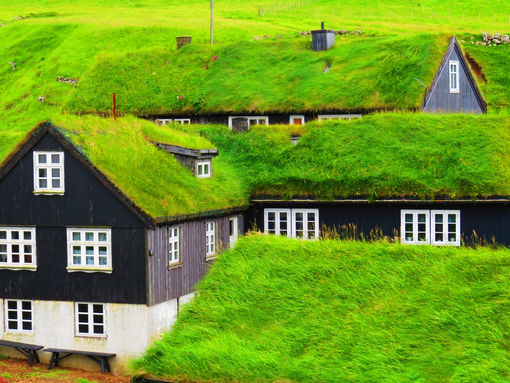 white and black house on green grass field