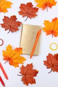 Golden Memories  page stories