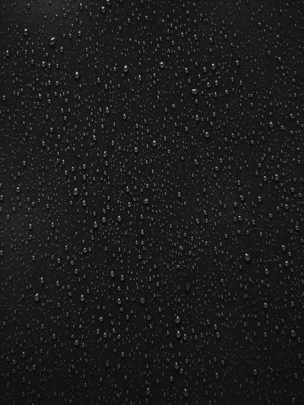 black and white polka dot textile