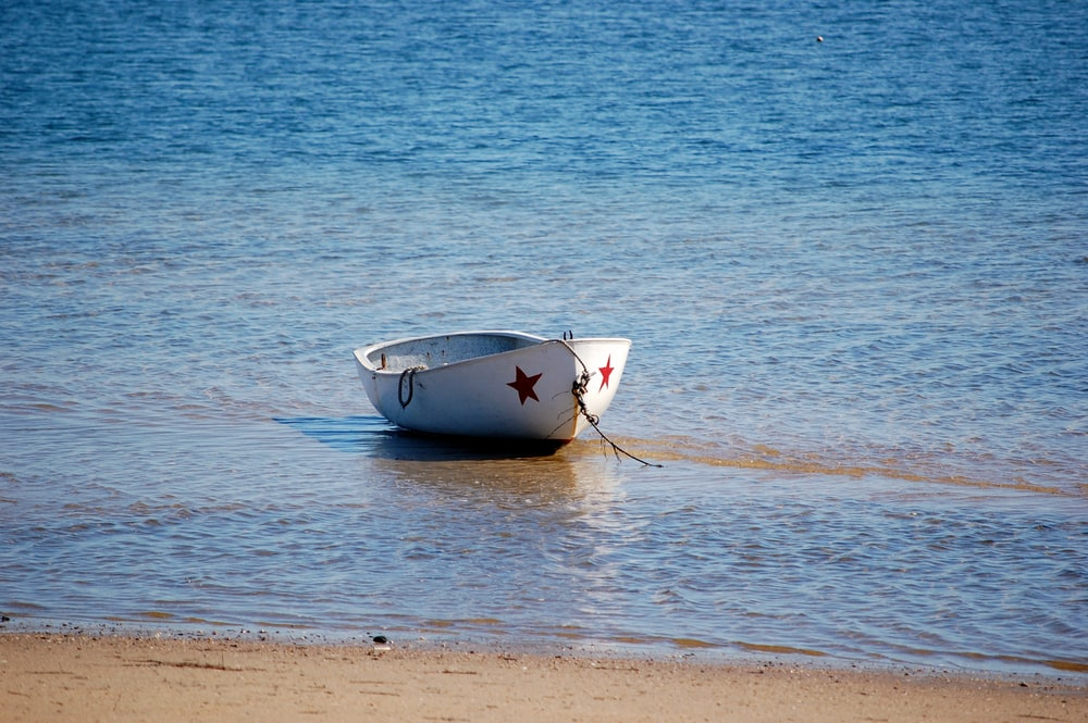 white boat on sea shore during daytime