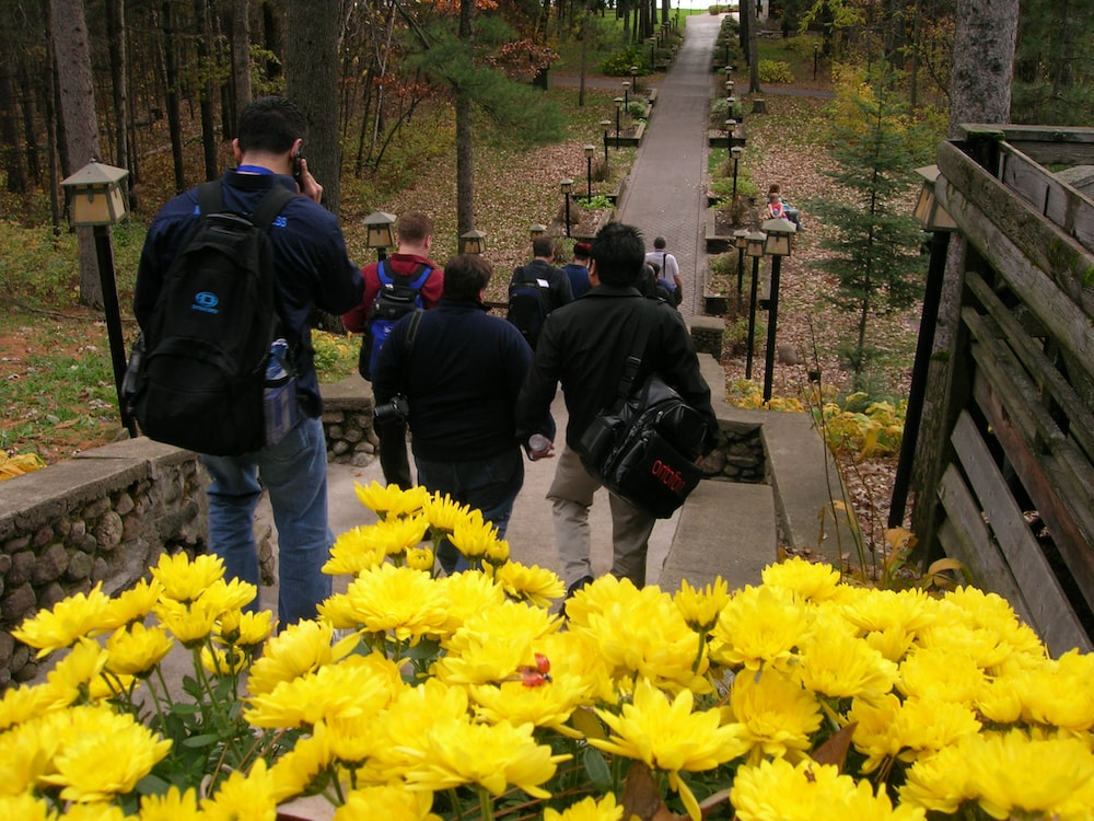 people in black jacket standing near yellow flowers during daytime