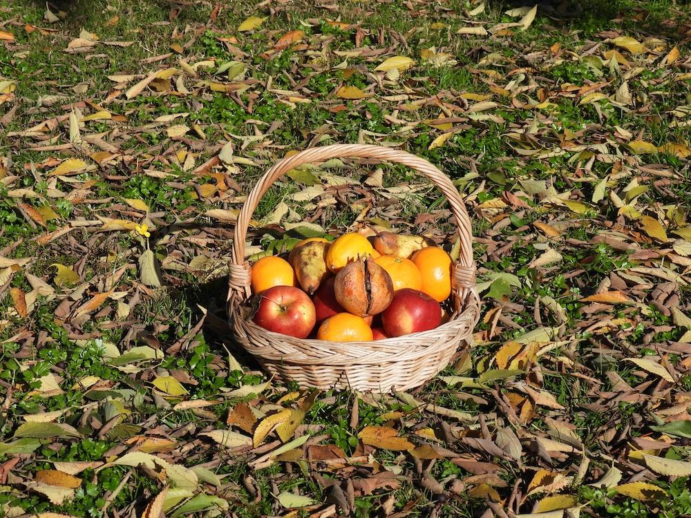 orange fruits in brown woven basket