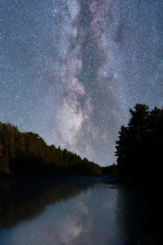 body of water near green trees under starry night
