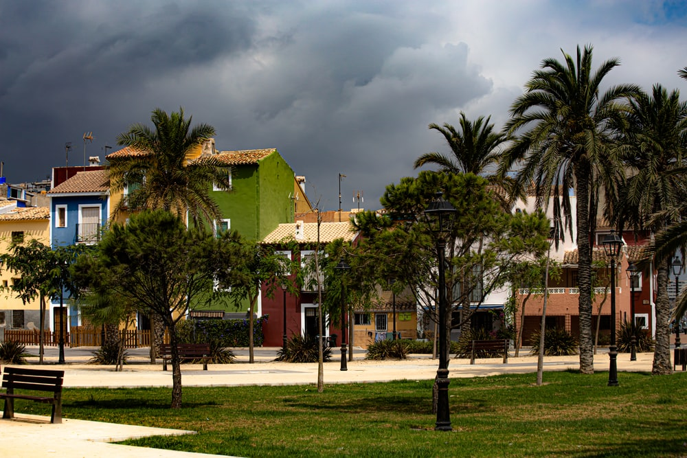 green palm trees near brown concrete building under gray clouds