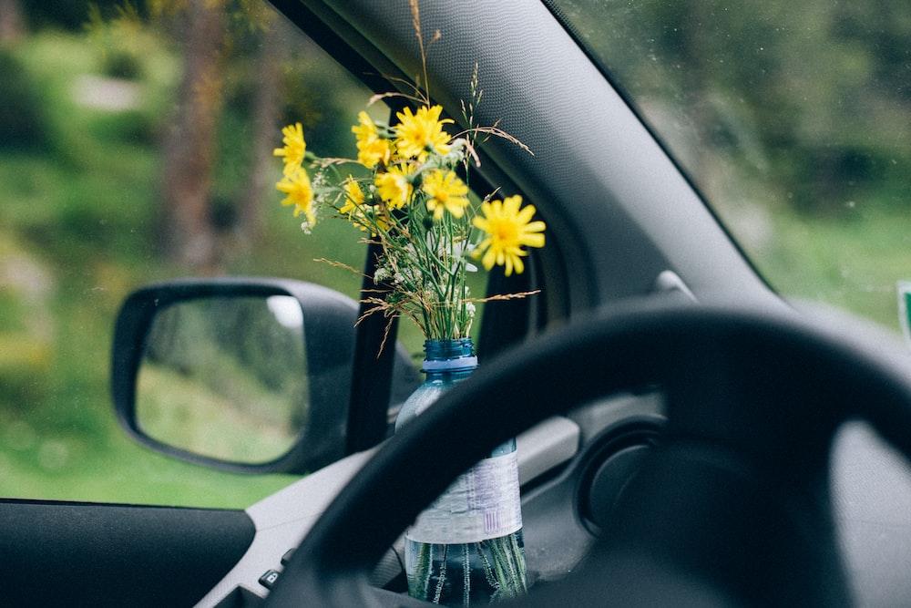 yellow flower in blue glass bottle on car side mirror
