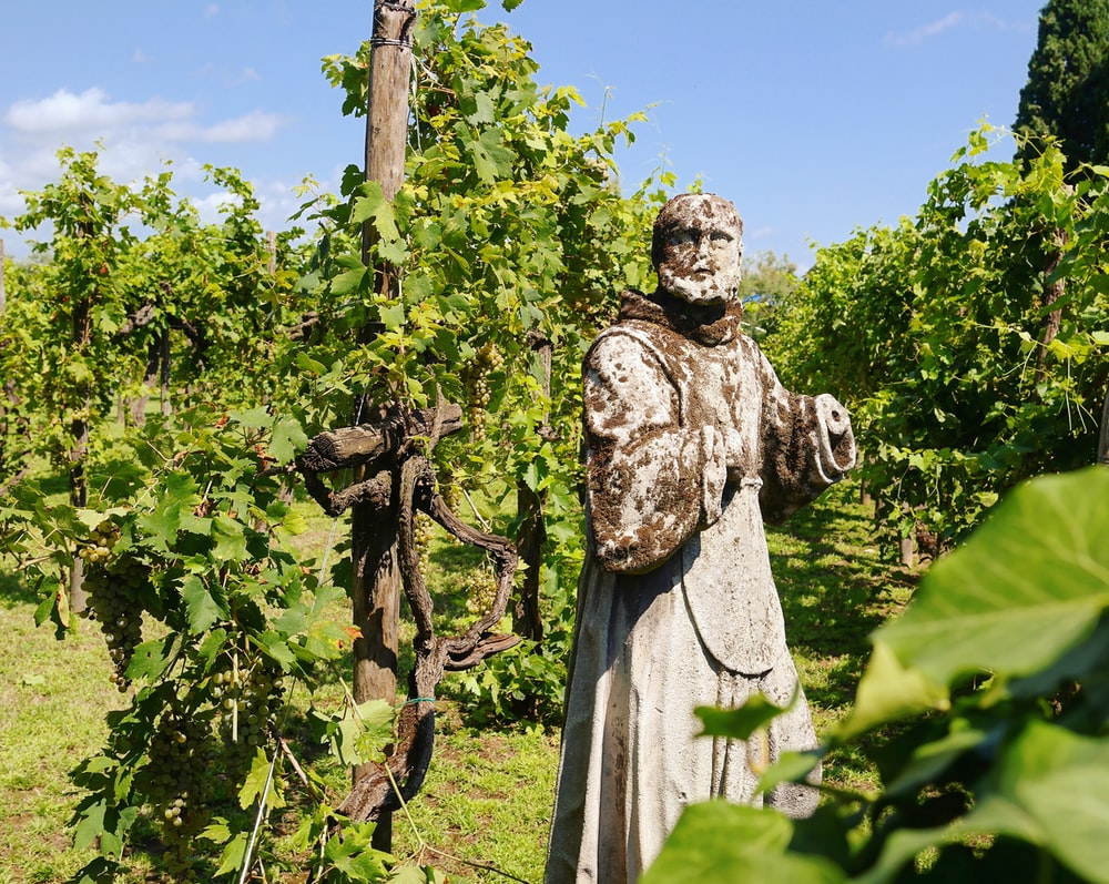 man in robe statue near green plants during daytime
