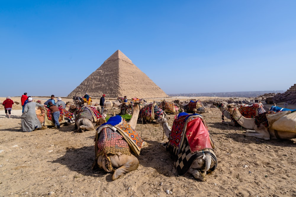 people sitting on brown sand near pyramid under blue sky during daytime