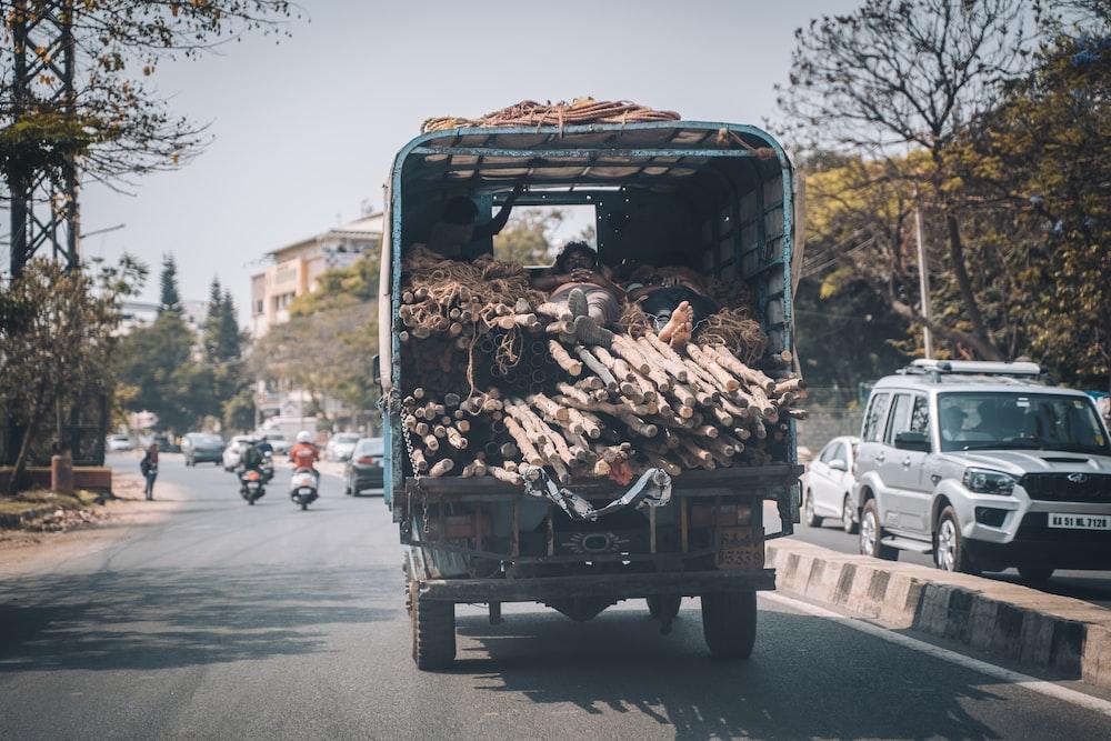brown dried leaves on black truck