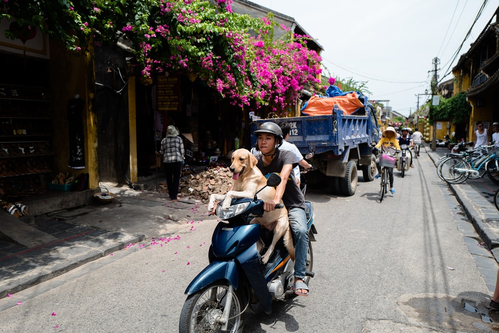woman in black tank top riding blue motor scooter