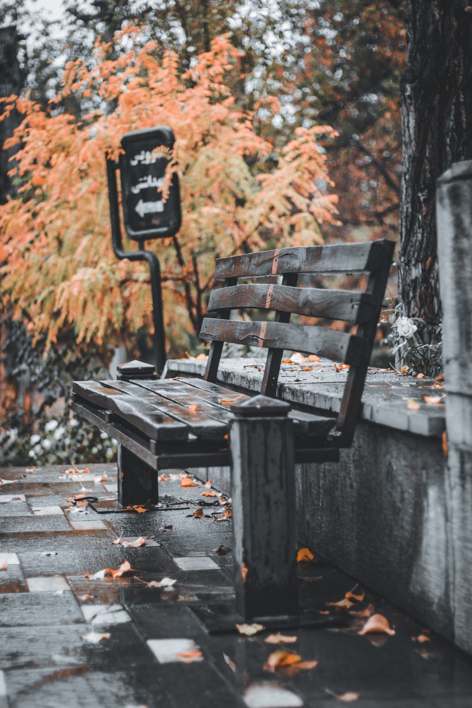 black wooden bench on wooden dock