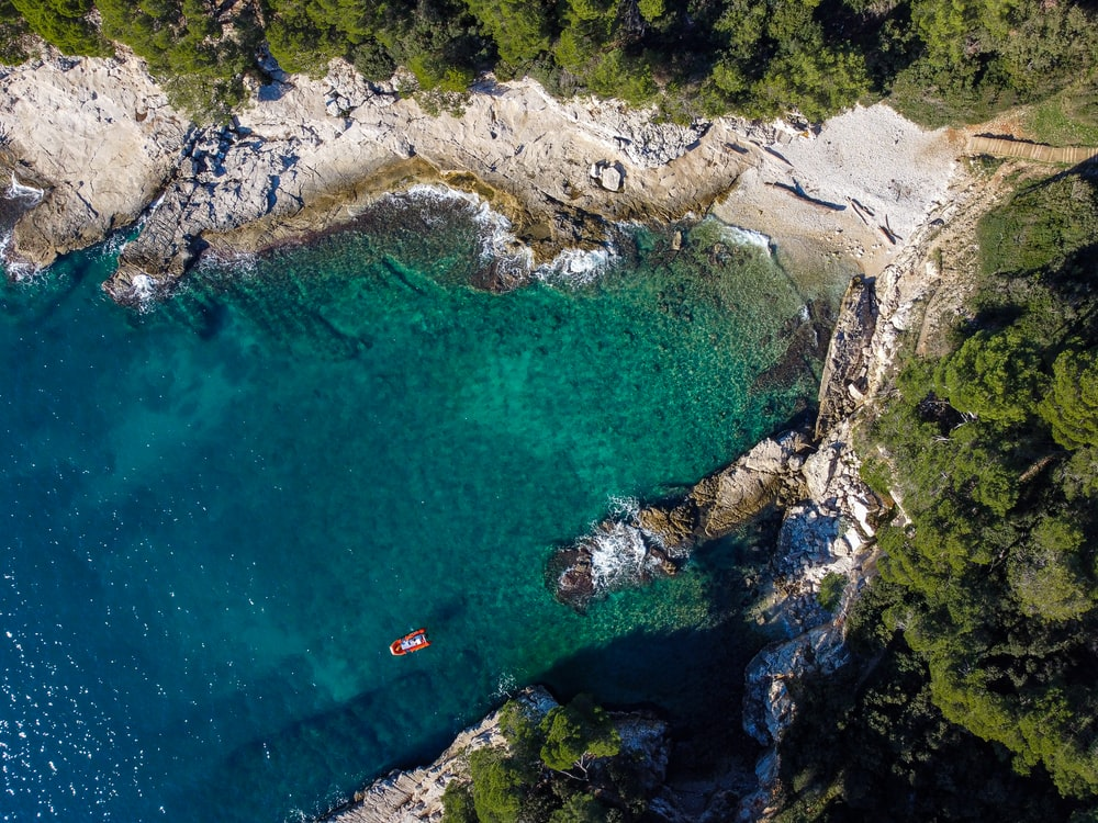 aerial view of people swimming on beach during daytime