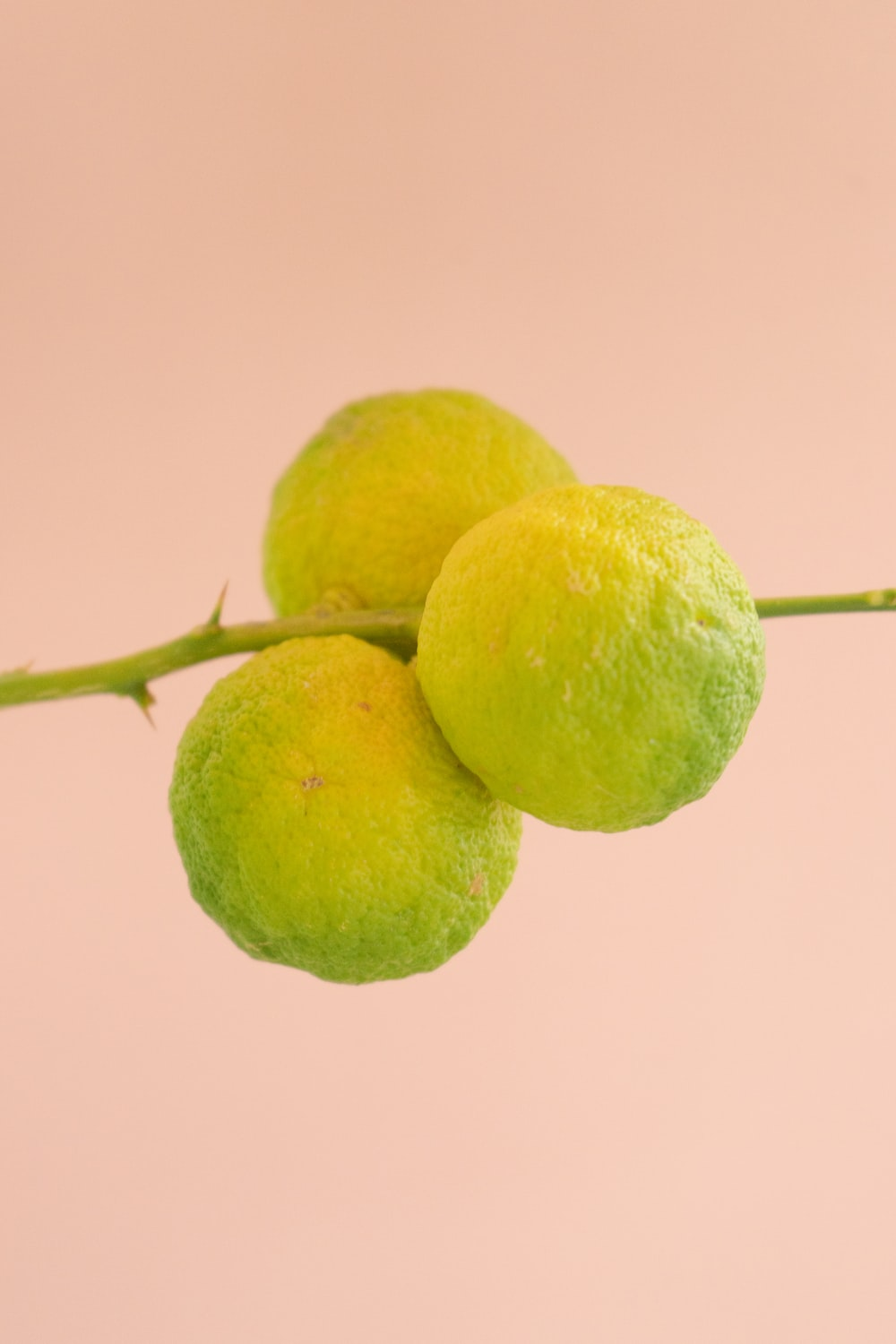two yellow fruits on pink background
