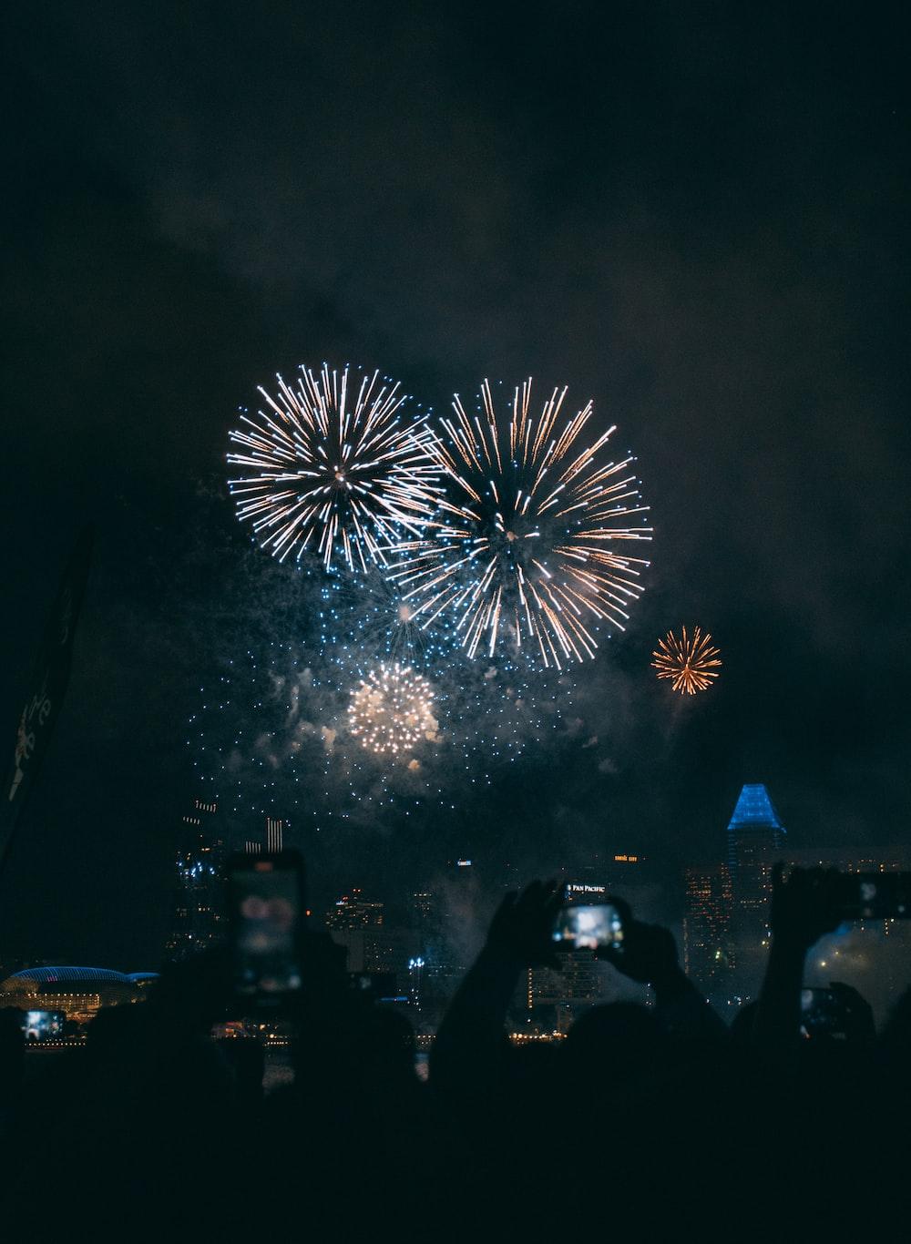 people watching fireworks display during night time