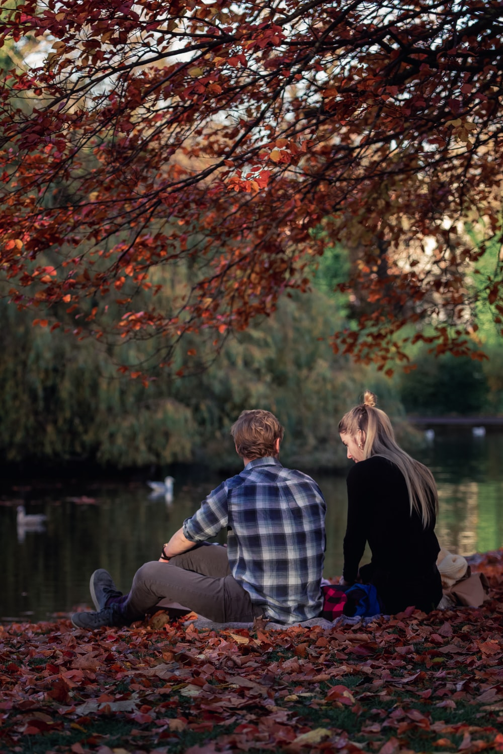 man and woman sitting on brown wooden bench near brown leaf tree during daytime