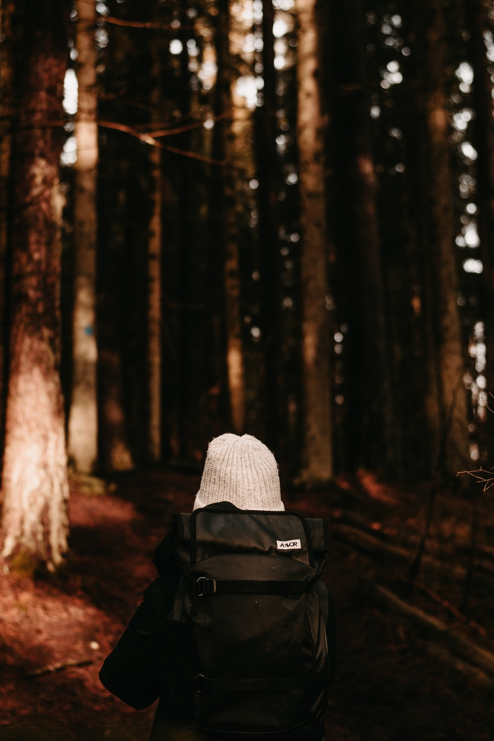 person in black jacket wearing white knit cap in forest during daytime