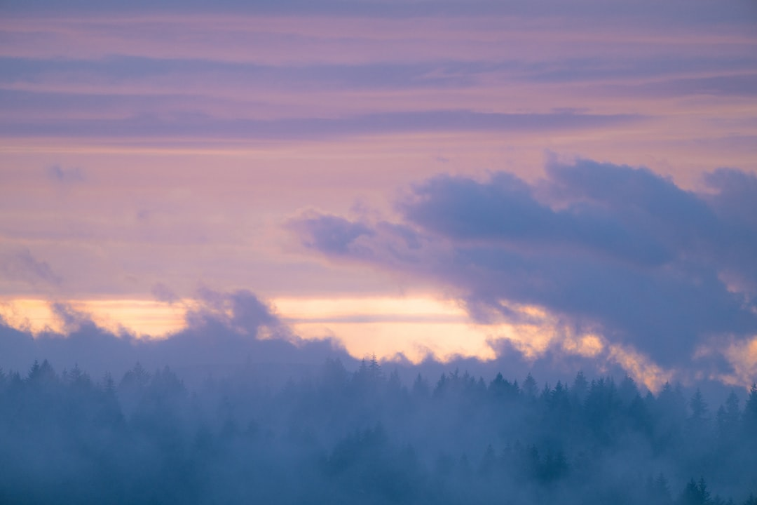 Fog Rising To Mingle With Clouds During Sunset.  - unsplash
