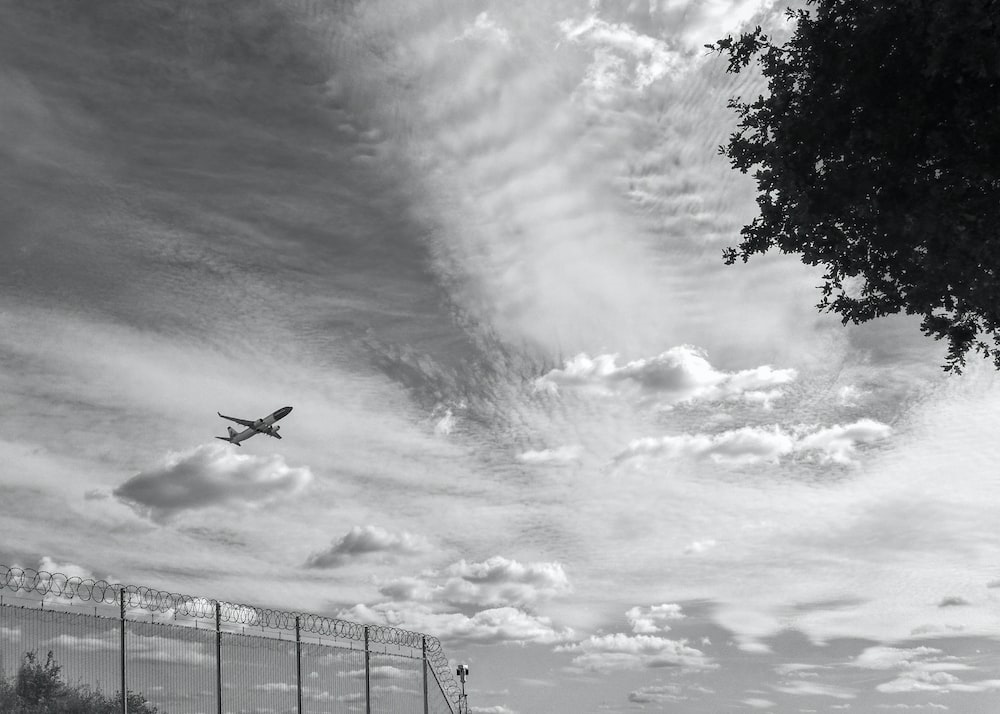 grayscale photo of airplane flying over the trees
