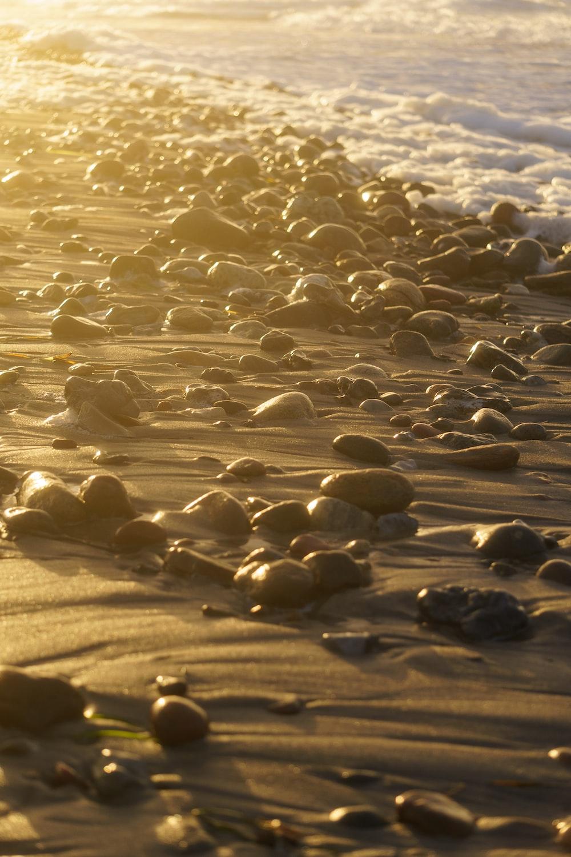 black stones on brown sand during daytime