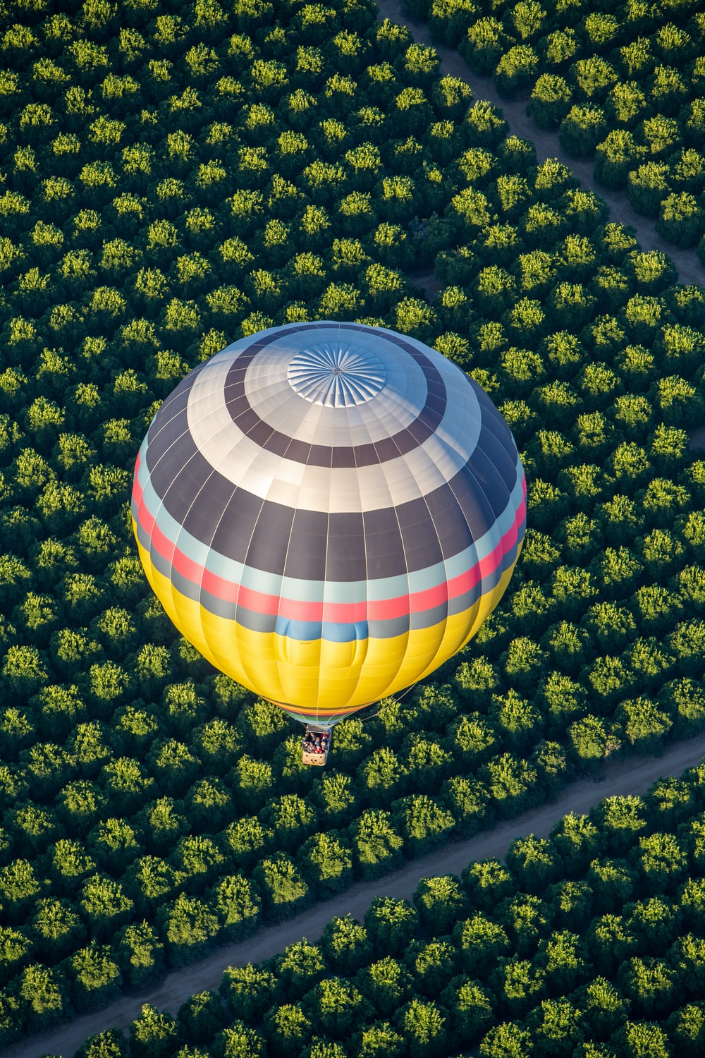 blue green and yellow hot air balloon